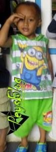 Alfin Hormat