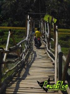 Jembatan Bambu Di Sukanagara