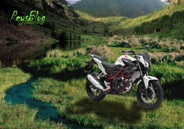 Honda CB150R 2015 Lembah Pinus Puncak 2 Bogor