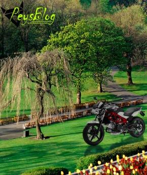 Honda VTR Taman Buah Mekarsari