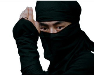 Ninja1