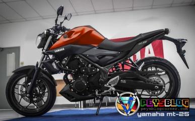 yamaha mt25 modifikasi super naked orange